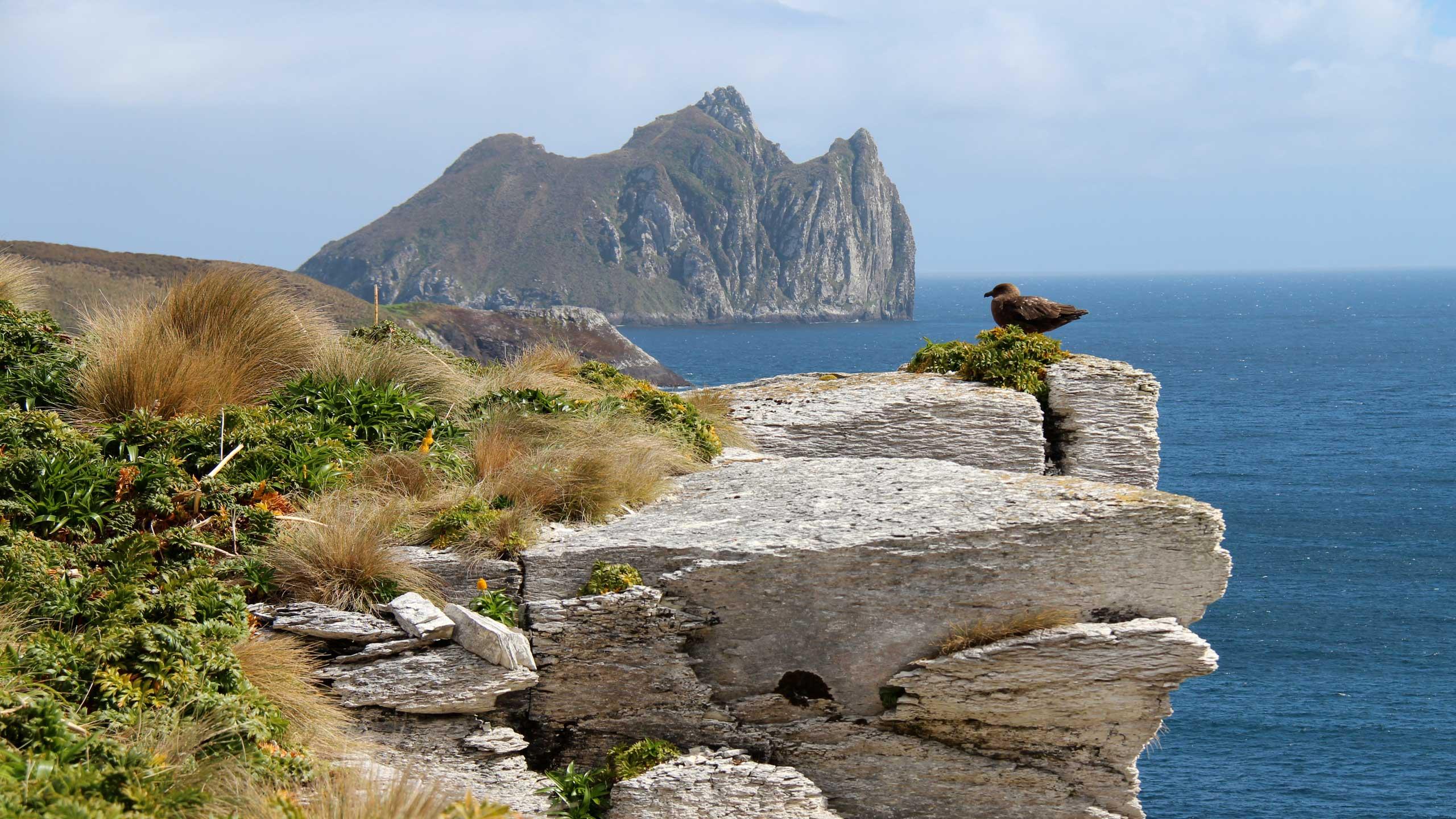 Subantarctic Islands