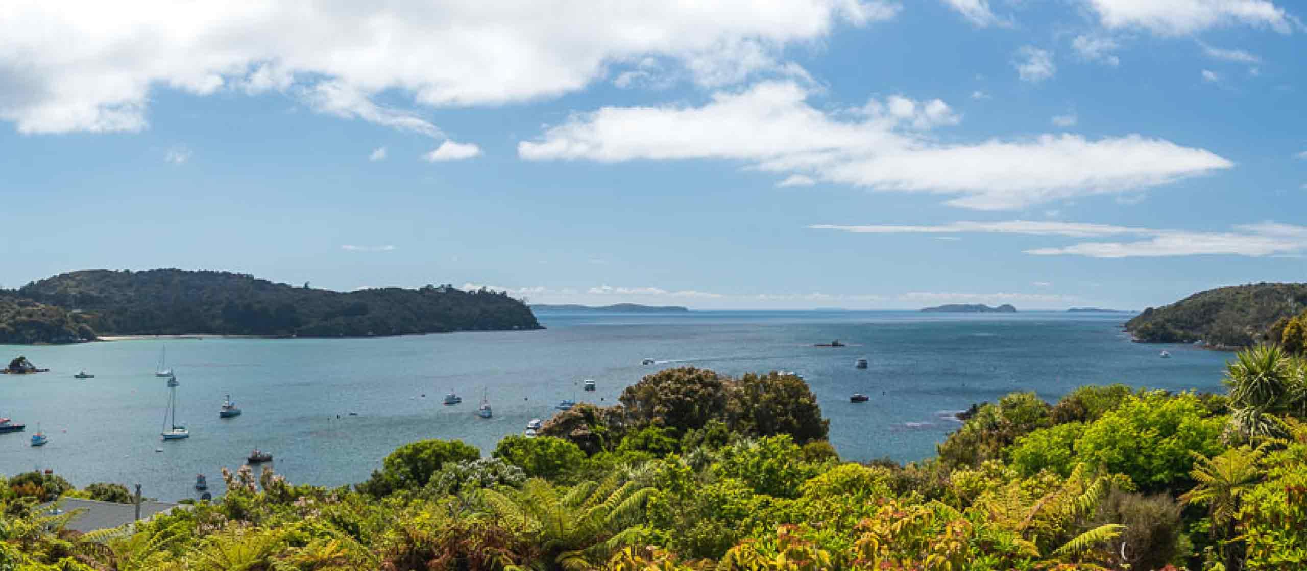 Stewart Island & Ulva Island