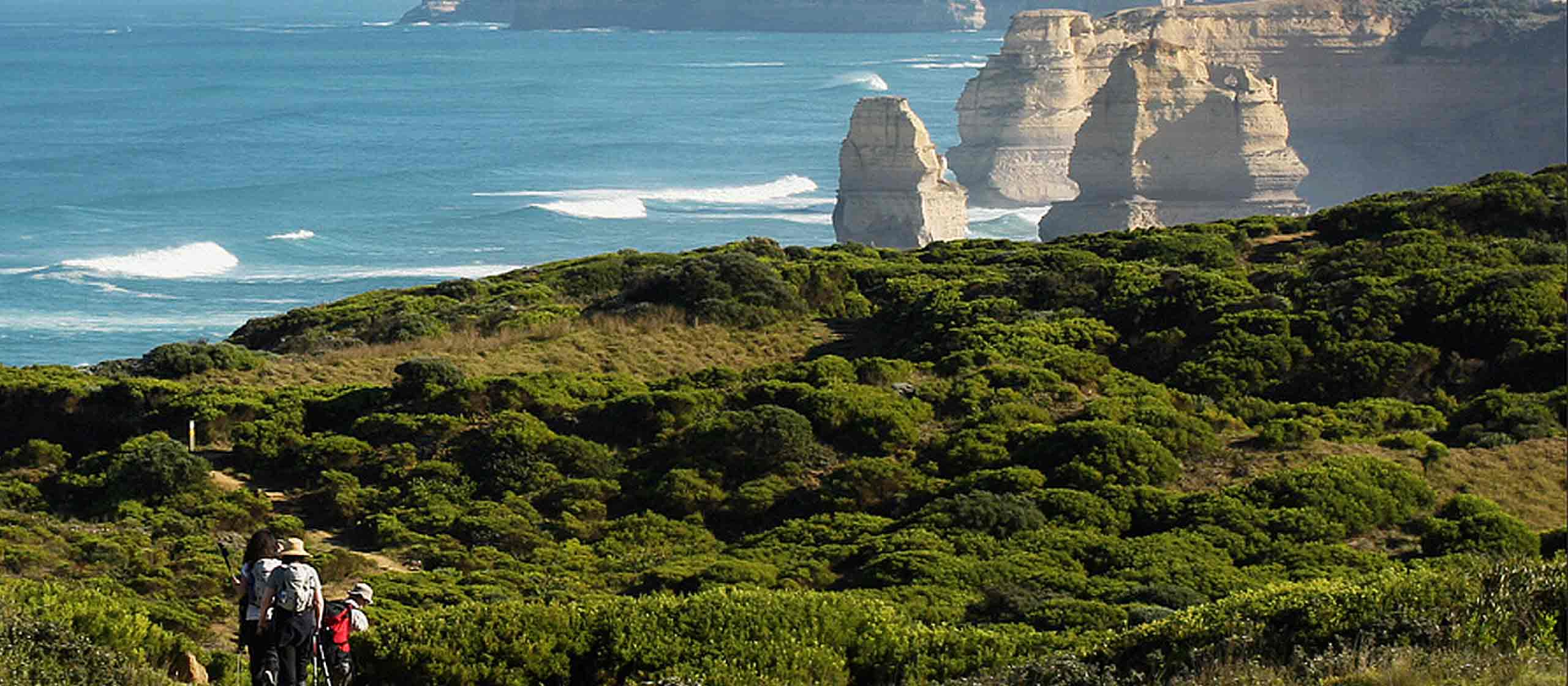 Great Ocean Walk & 12 Apostles