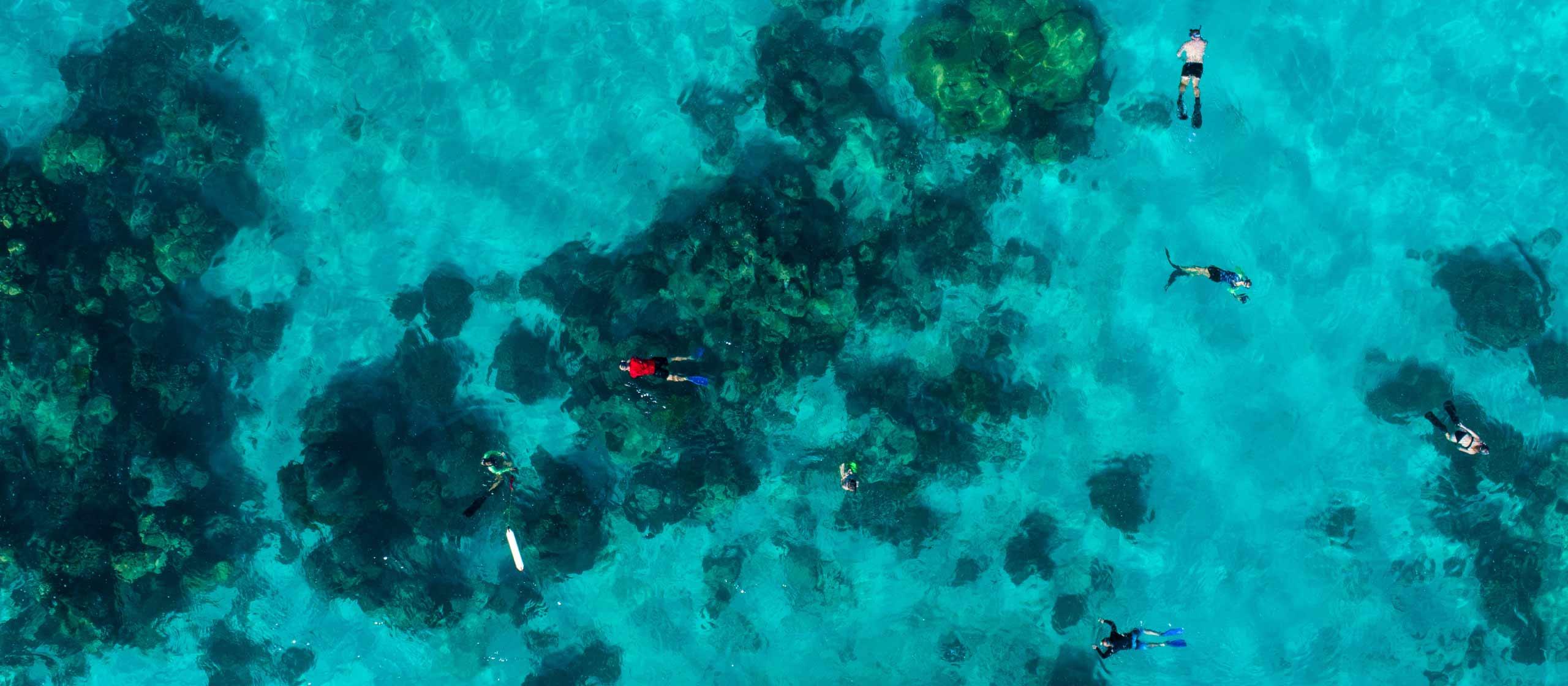 West Coast / Ningaloo Reef