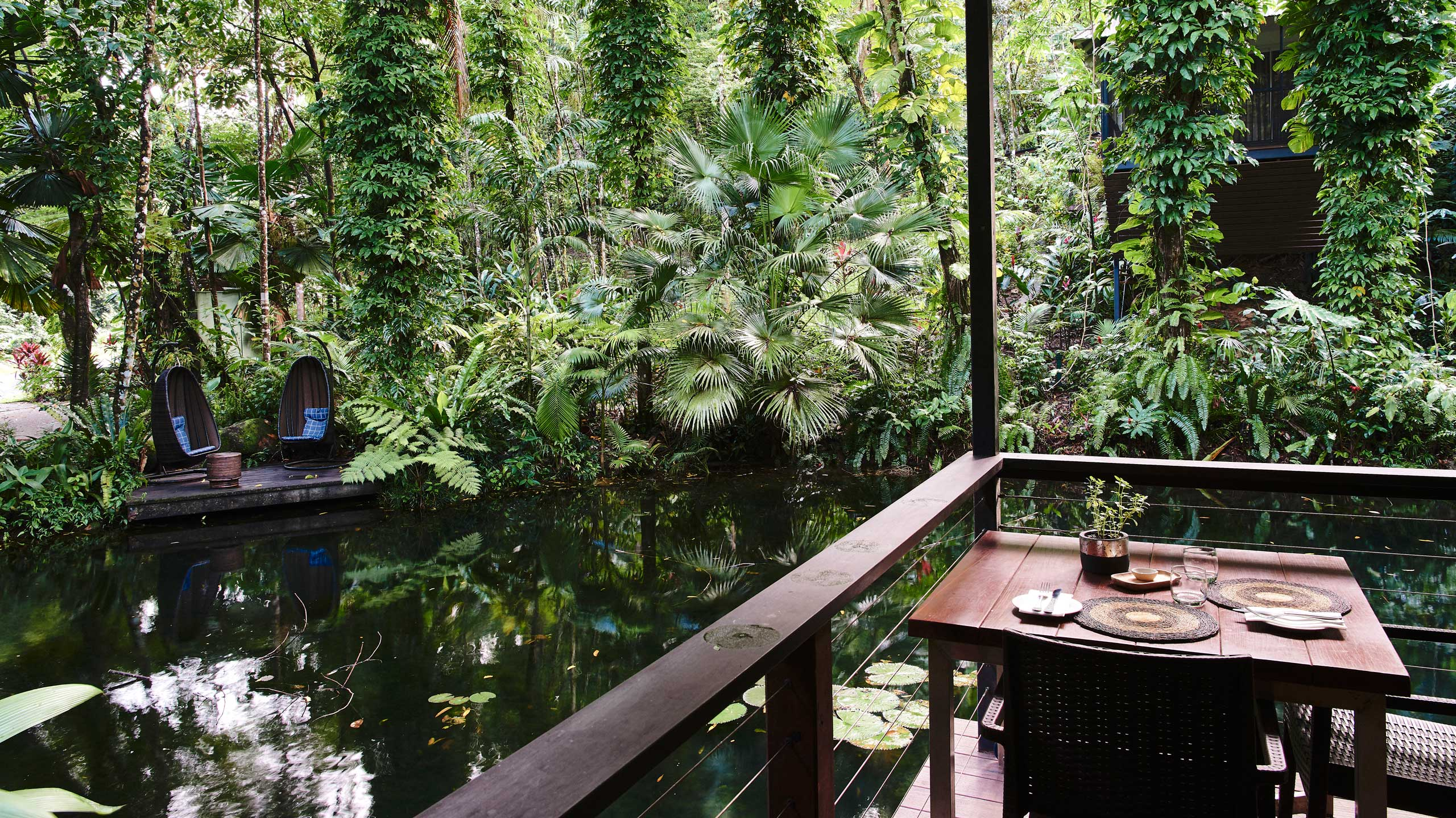 daintree-ecolodge-queelsand-accommodation-dining