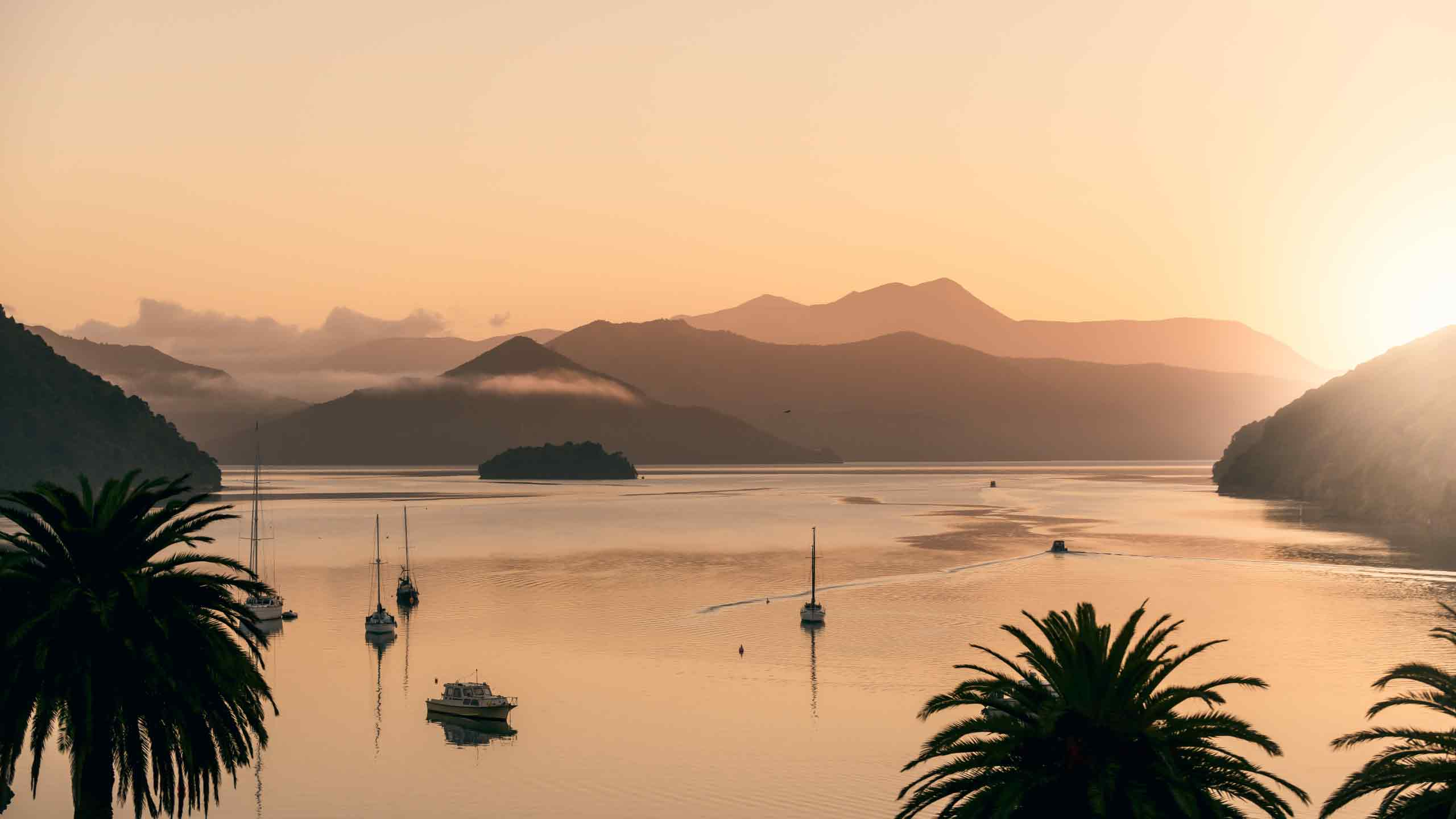 things-to-do-in-picton-new-zealand-water-view