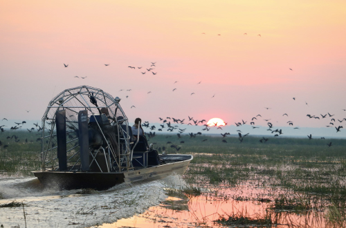 Bamurru-Plains-airboat