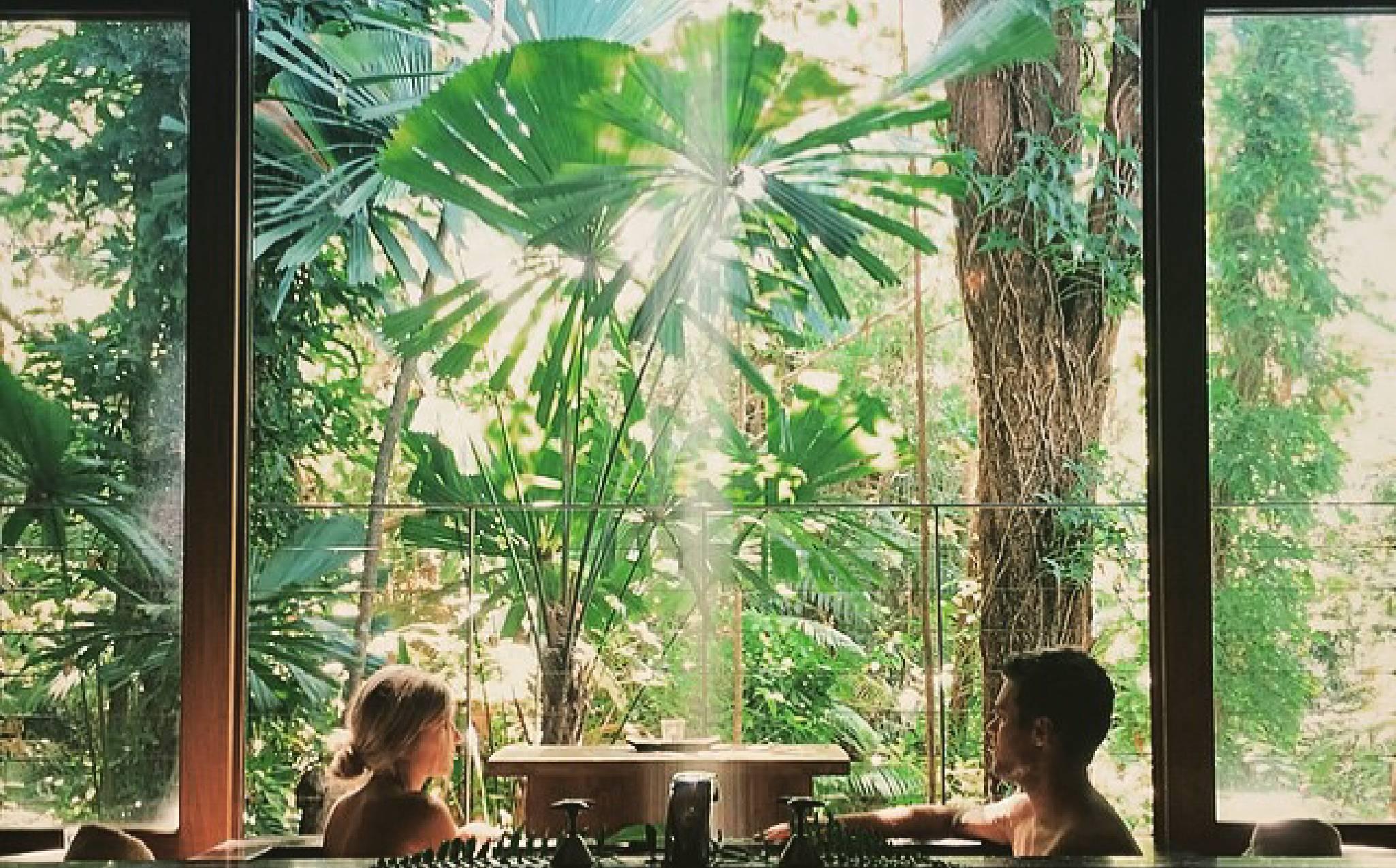 silky-oaks-lodge-luxury-accommodation-australia