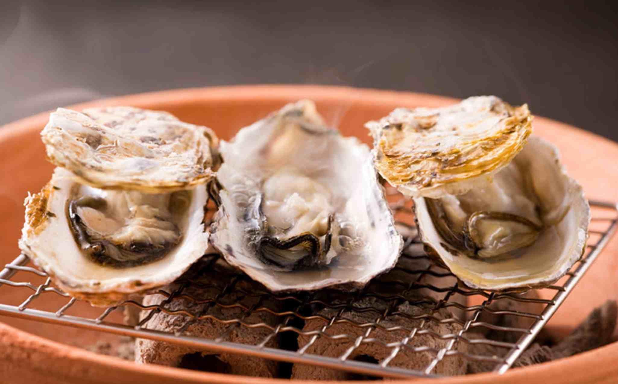 Seto Inland Sea Oyster