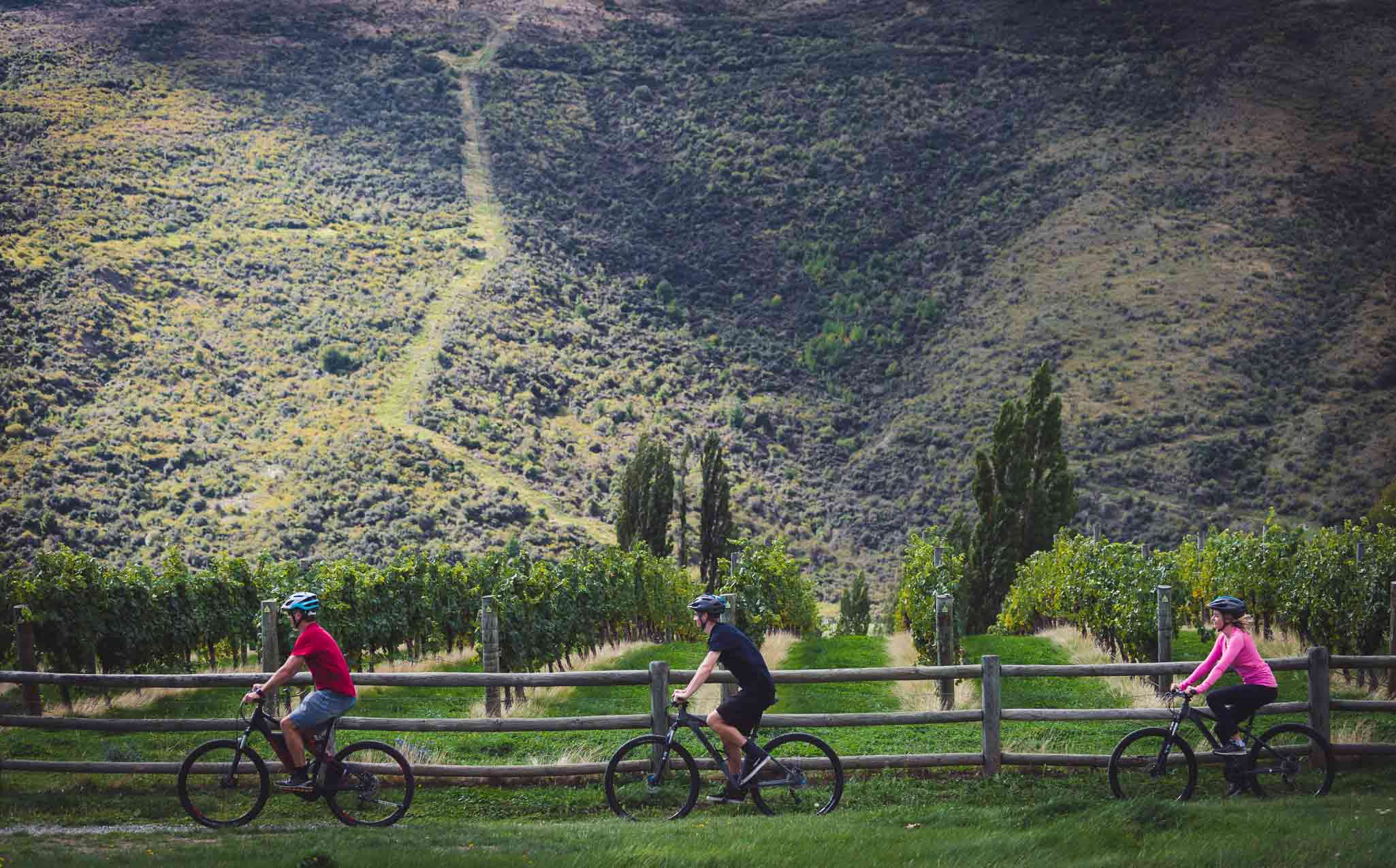 Queenstown Trail Cycling - Gibbston Valley