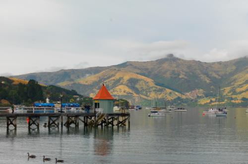 akaroa-peninsula-port-south-island-new-zealand-landscape-scene