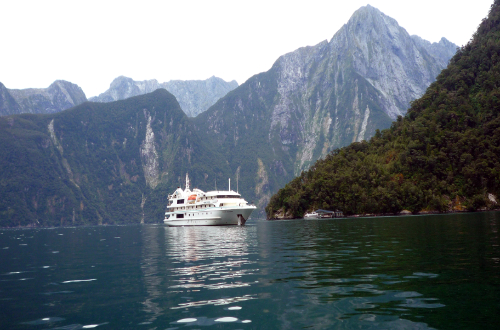 eas-coast-auckland-milford-luxury-cruise-new-zealand-tour