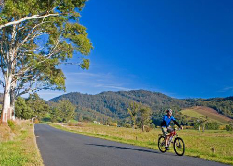 Huon Valley Gourmet Cycling