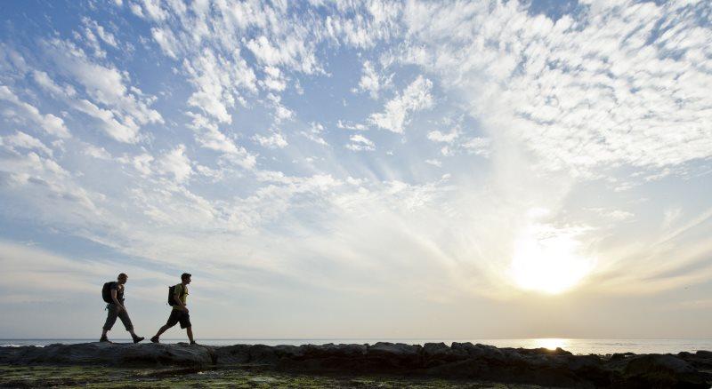 Great Ocean Walk guided