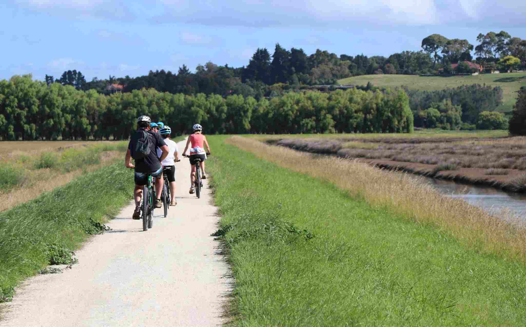 New Zealand Ahuriri Estuary Trail