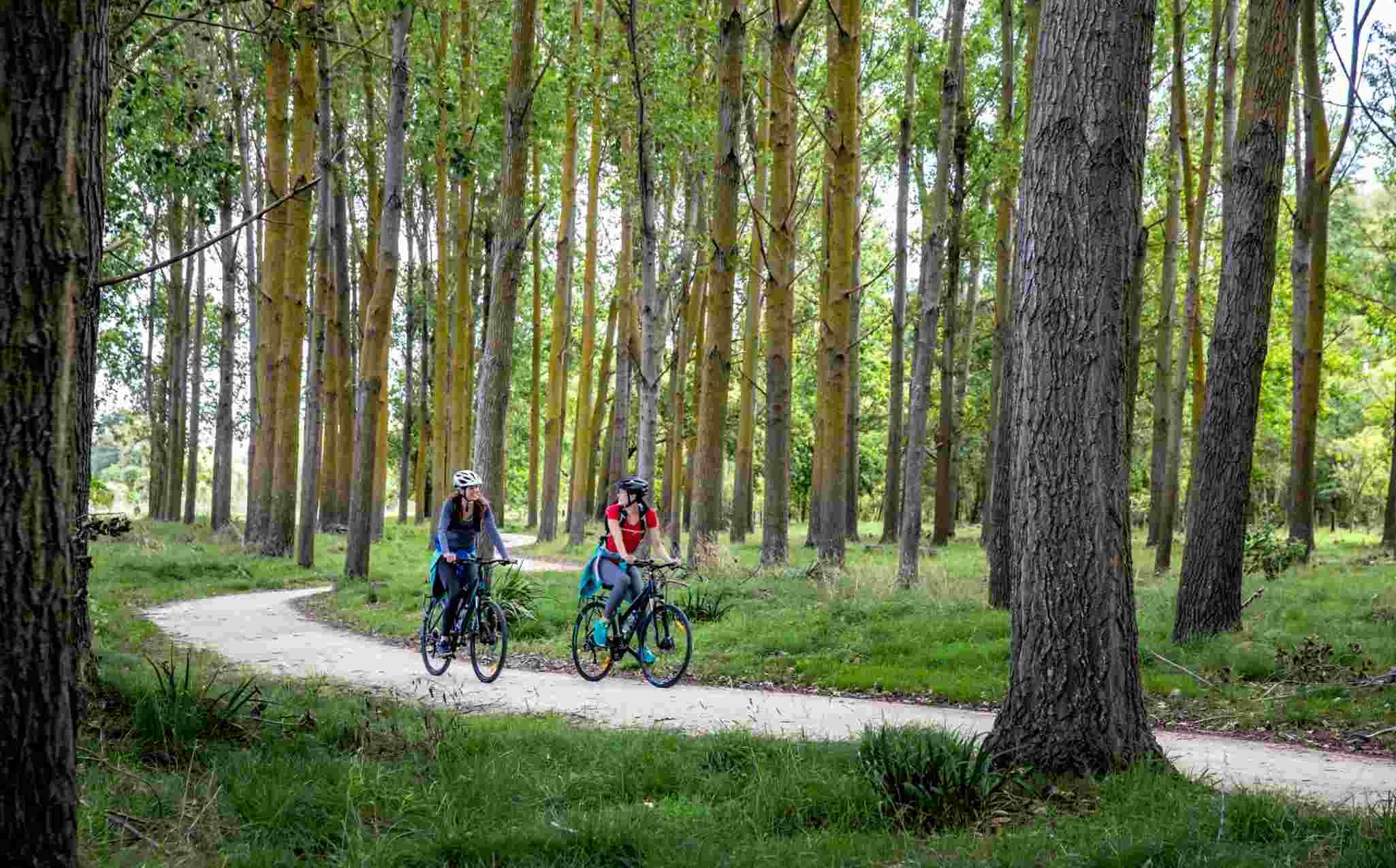 New Zealand Hawkes Bay Tails Cycling Trail Puketapu Loop