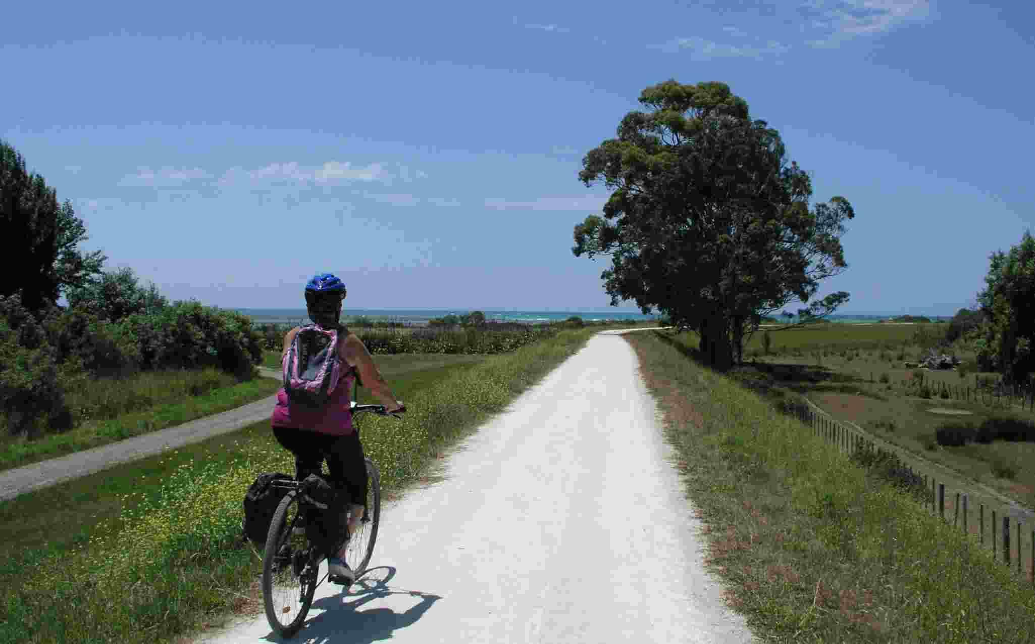 New Zealand Hawkes Bay Trails Tuki Cycling