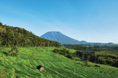 bali-beyond-hiking-amankila-ricefield-trekking-ultimate-luxury-onlyluxe