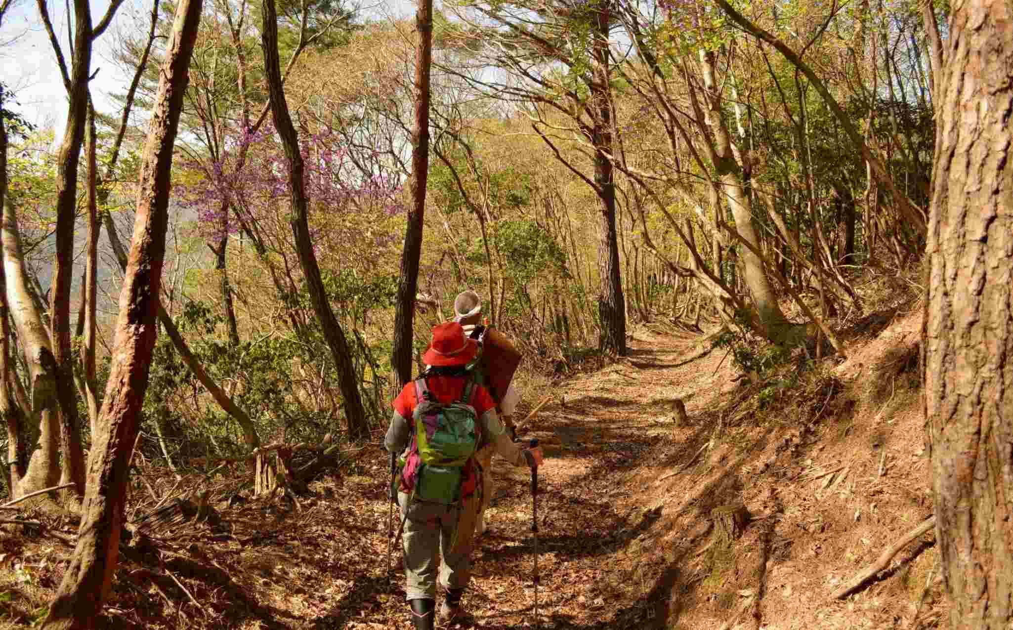 Kambayashi Old Pilgrimage Trail