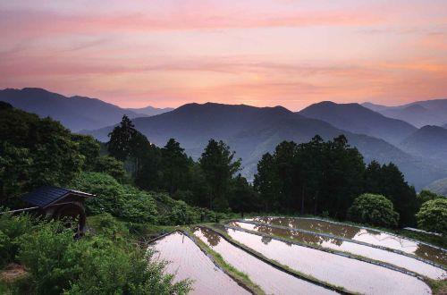 kumano-kodo-walk-Takahara-mountains