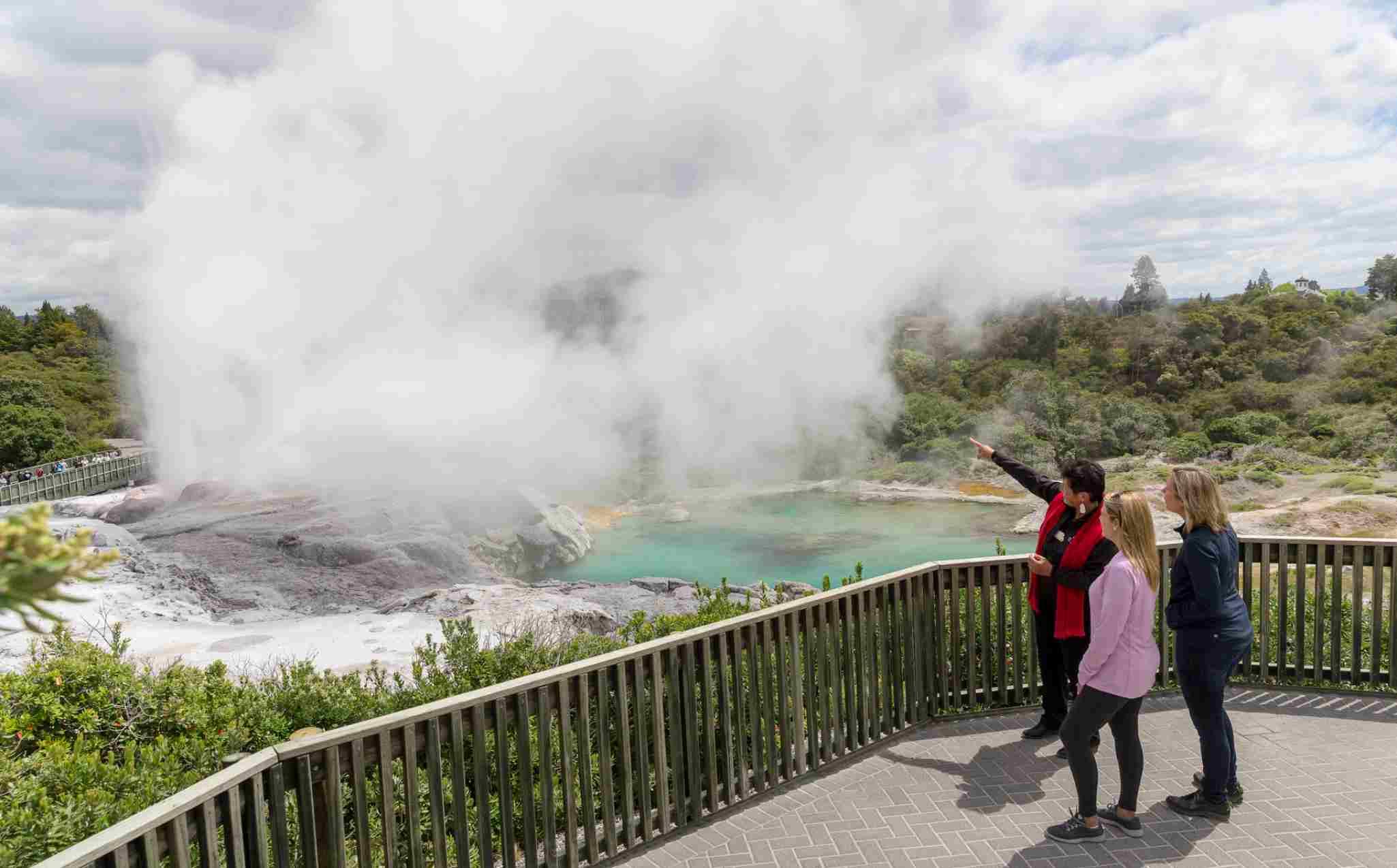 Geothermal Park Te Puia