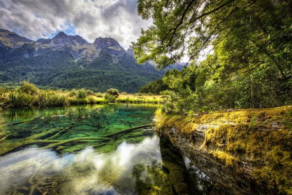 South Island Walk New Zealand Milford Sound Walking Track Lake