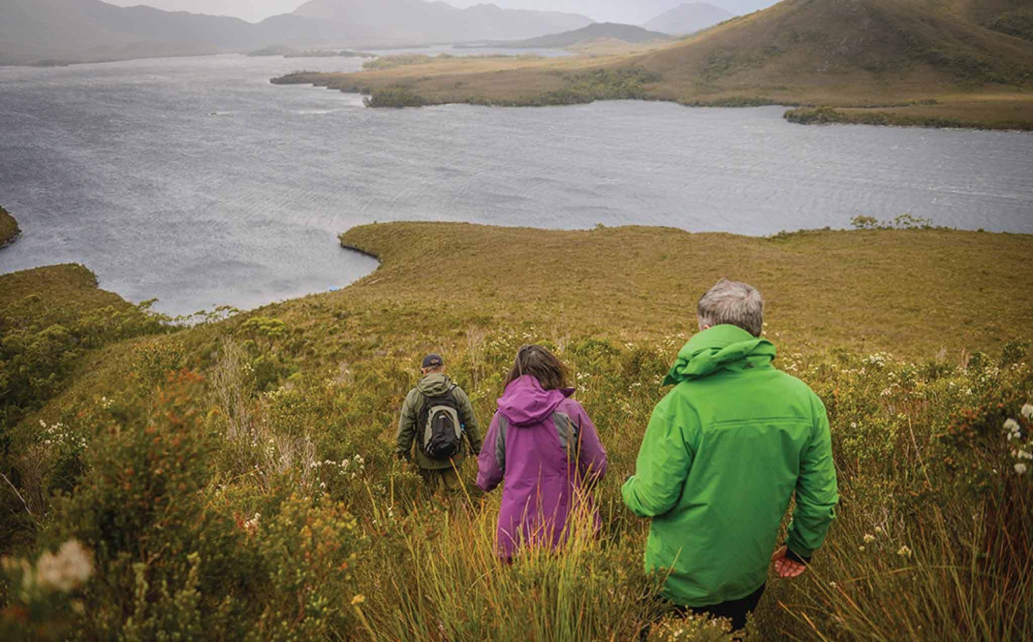 Southwest National Park Tasmania Walk