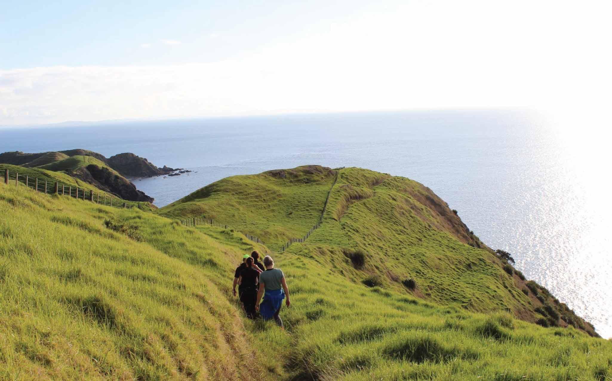 The Coromandel Coastal Walkway