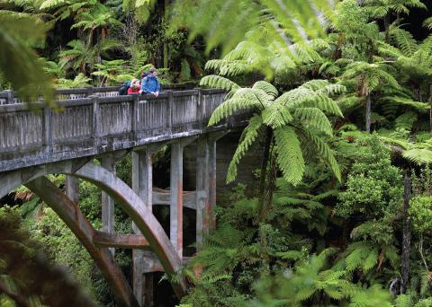 Whanganui River Bridge to Nowhere