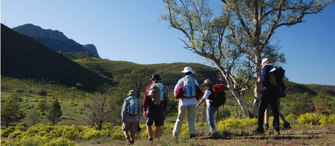 Flinders Ranges Heysen Trail Trekking