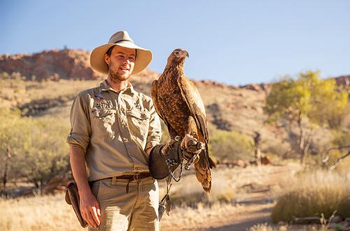 Alice-Springs-Desert-Park-Eagle-Birdshow